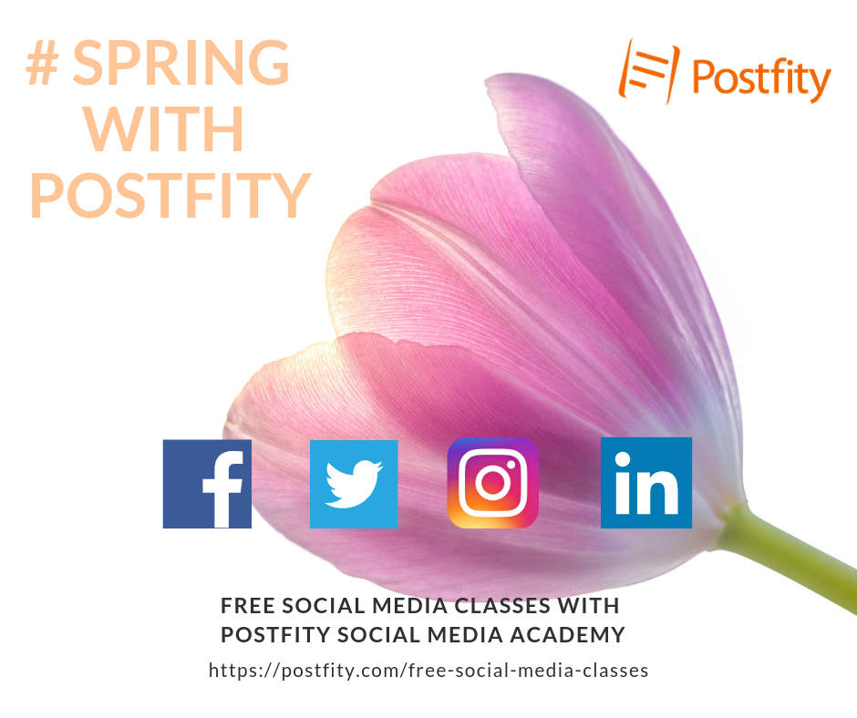 spring with postfity social media classes