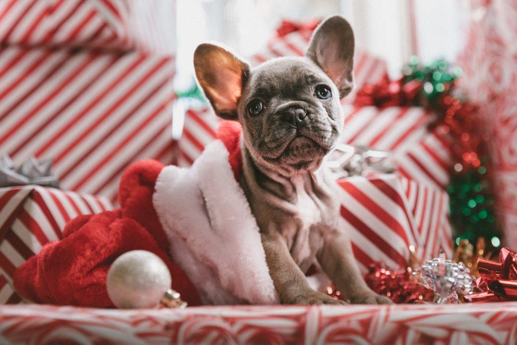 Christmas social media campaign